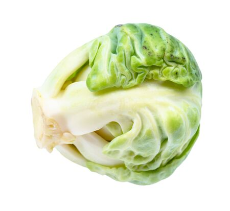 single fresh brussels sprout cut out on white background
