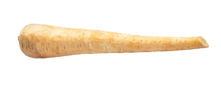 root of Parsnip (pastinaca sativa) cut out on white background