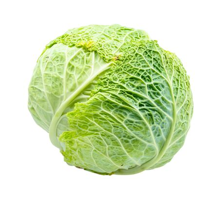 head of green savoy cabbage cut out on white background