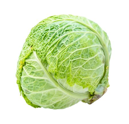 cabbage head of green savoy cabbage cut out on white background 스톡 콘텐츠