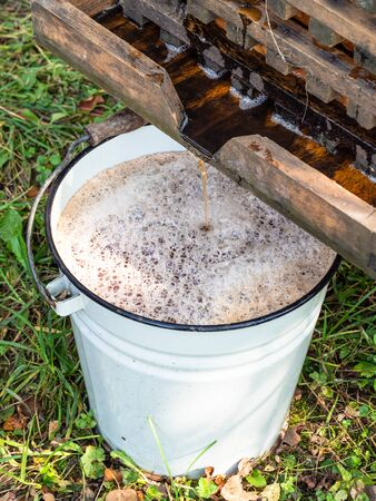 fresh apple juice flows from press into bucket to produce cider in village 스톡 콘텐츠