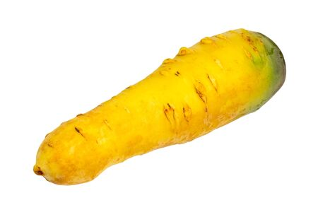 Fresh organic central asian yellow carrot cut out on white background