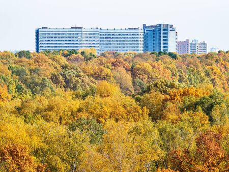 tops of colorful trees in city park and large apartment building on horizon on sunny autumn day 스톡 콘텐츠