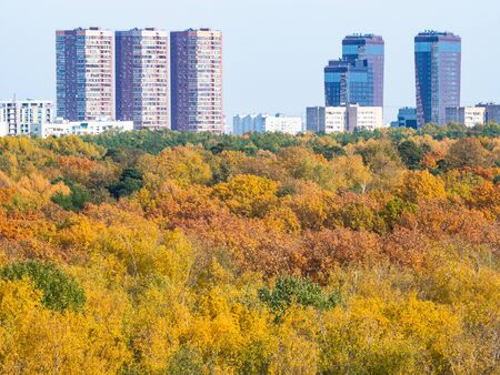 high-rise urban houses and yellow city park on sunny autumn day