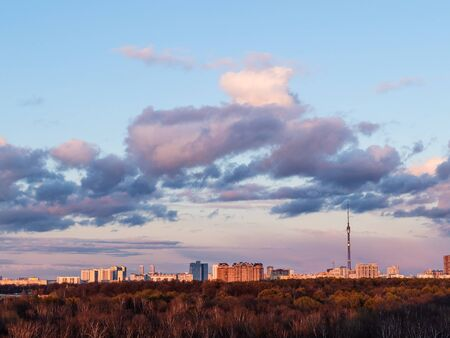 dark pink and blue clouds over city park at spring dusk in Moscow city