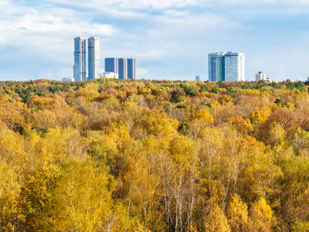 view of yellow forest and high-rise houses on horizon on sunny autumn day