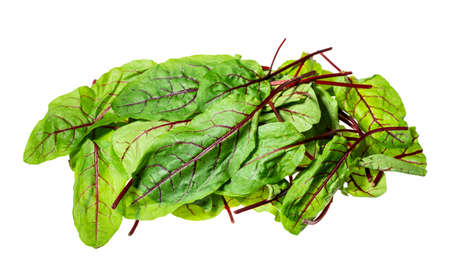 pile of fresh leaves of Chard leafy vegetable cut out on white background