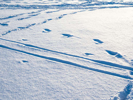 blue surface of snow illuminated by setting sun with ski tracks and footprints in cold winter twiligh Stock fotó