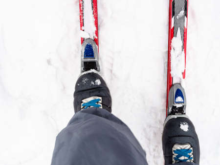 top view of skier fixes boots to plastic skis at snow in winter