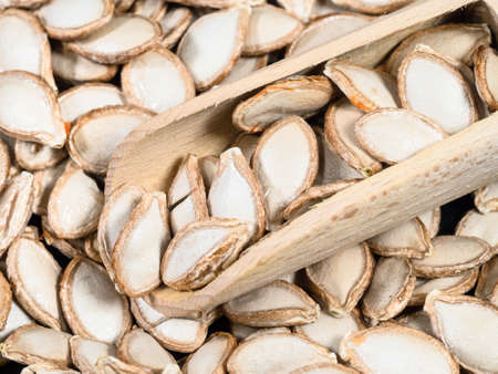 wooden scoop on pile of unhusked Pumpkin seeds closeup