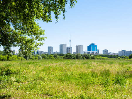 green overgrown meadow and residential district on horizon on sunny summer day Stock fotó