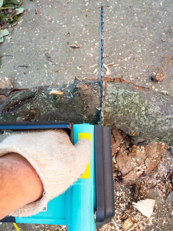 point-of-view shot of sawing tree limb with electric chain saw in backyard Stok Fotoğraf