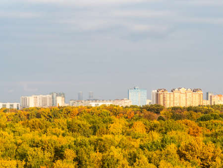 above view of colorful forest and modern residential district on horizon on sunny autumn day