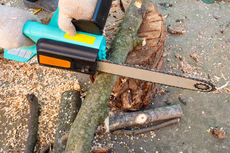side view of sawing tree branch with electric chain saw in backyard Stok Fotoğraf