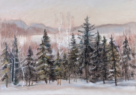 distances: Winter distances, fir forest, behind it a field covered with snow Stock Photo