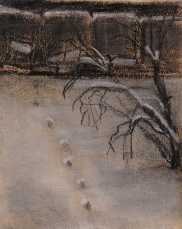 inclined: Traces on snow, the winter evening, the inclined tree