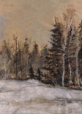 snowdrifts: Coniferous wood in the winter  Road, fur-trees, snowdrifts