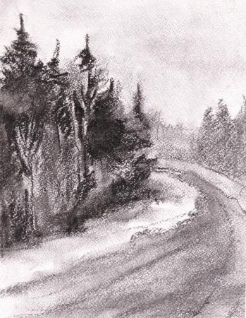 Dark coniferous wood at road  Winter photo