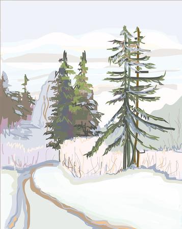 rural road: Rural road in the coniferous wood.Winter