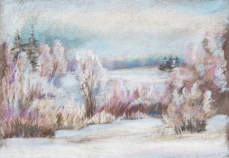 hoarfrost: Winter landscape. Cold day, hoarfrost, middle of December Stock Photo