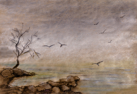 early morning: Fog over lake, early morning, seagulls over water