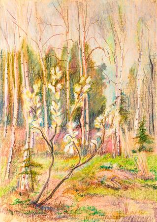 kidneys: Spring day, kidneys on willow bushes Stock Photo