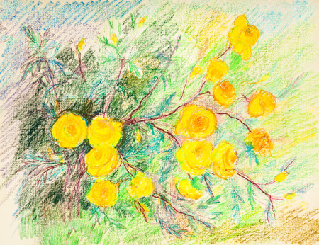 rose bush: Summer day. Blossom of yellow rose bush