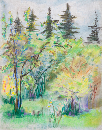 furtree: Summer landscape. Willows in front of spruces