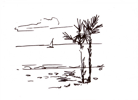 palmtrees: Sealandscape with two palm-trees Stock Photo