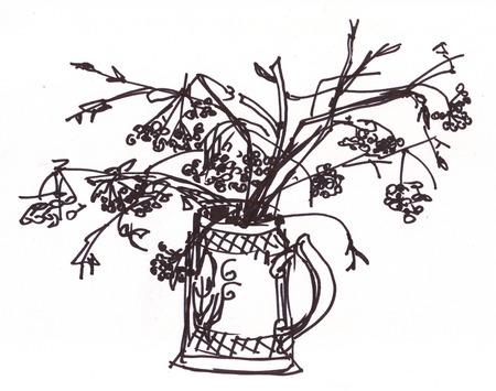 mountain ash: Mountain ash branches, fall, instant sketch Stock Photo