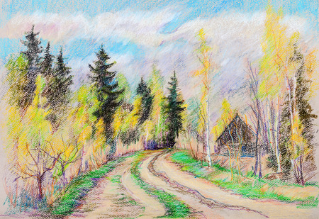 rural road: Rural road in wood birches  and old spruces ,