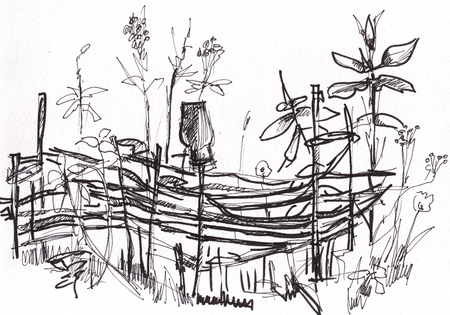 wattle: instant sketch,  wattle fence, black and white