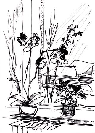 Instant sketch, flower on window sill