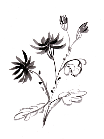 Bunch of chrysanthemums, sumi-e Imagens