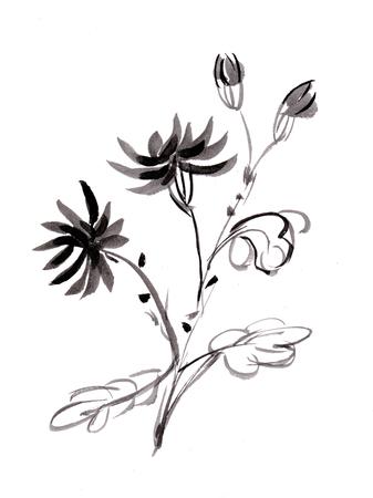 Bunch of chrysanthemums, sumi-e Banco de Imagens