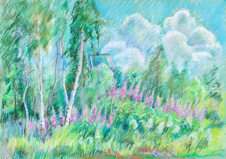 Blossom of wide summer flowers on glade 版權商用圖片