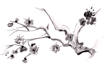 Flowering branch of tree, japanese style Imagens