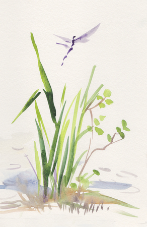 dragonfly near reed, summer landscape, sumi-e