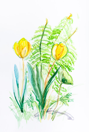 yellow tulip with green fern