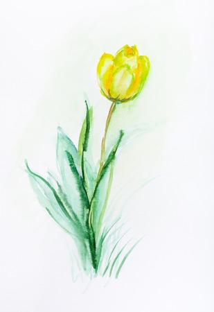 lonely yellow tulip in spring in garden Banco de Imagens