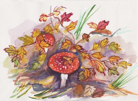 Autumn drawing, mushrooms  fly agaric near yellow bush