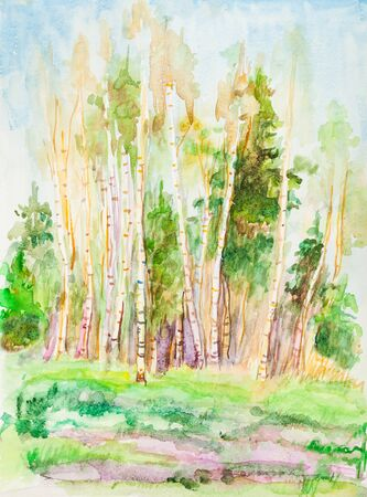 biches in spring sunny day in May, watercolor Banco de Imagens