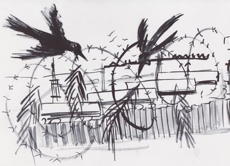 barbwire and ravens around wired camp