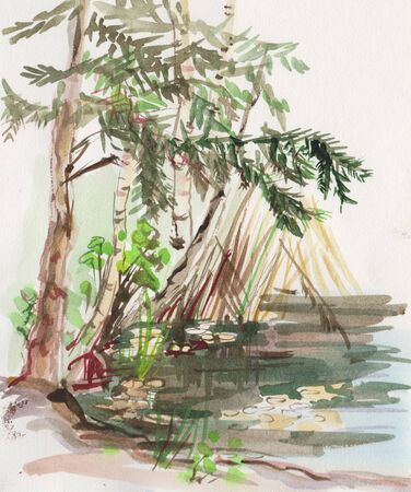 landscape with little pond surounded by trees and cane 版權商用圖片