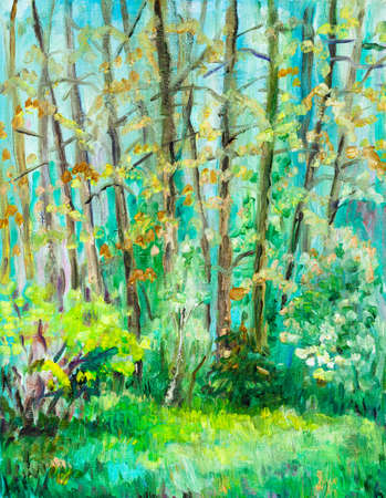 sunny day in may forest, high trees on edge