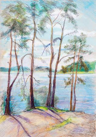 Summer landscape, pines on the bank of river Volga