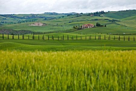 val dorcia: Hills in the Val dOrcia in Tuscany in Italy Stock Photo
