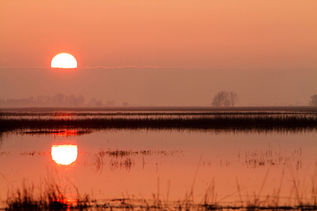 quietude: Sunset in the steppe flooded Hungarian Stock Photo