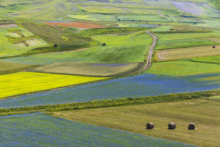 norcia: Castelluccio of Norcia. Landscape in the national park of the Sibillini mountains in Italy Stock Photo