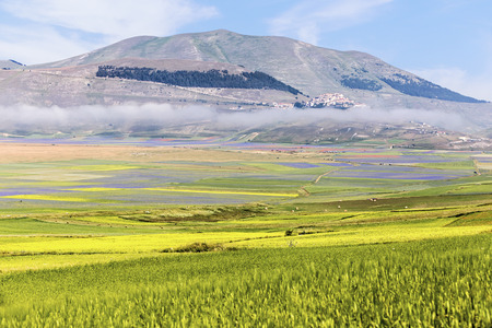 norcia: Castelluccio of Norcia. Landscapes in the national park of the Sibillini mountains in Italy Stock Photo